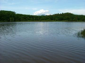 Danau Jasin